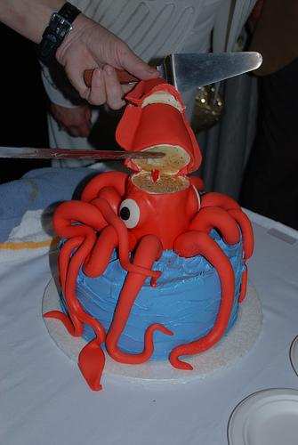 Photo Courtesy of SquidSquid.com